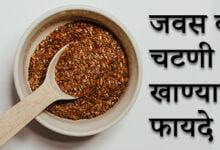 Photo of जवस व जवसाची चटणी खाण्याचे फायदे – Javas Khanyache Fayde